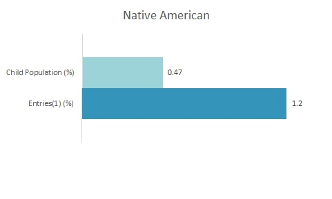 2019 Disparity Indices by Ethnicity: Native American