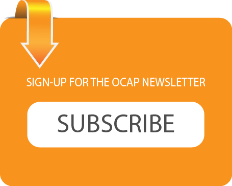 Orange Newsletter Signup Button